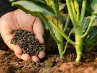 Granulētie organiskie mēslošanas līdzekļi