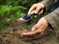 Dārzkopības preces